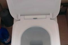 New toilet seat
